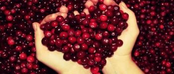 Клюква - один из лучших продуктов для сердца и сосудов