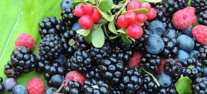 Витамины весной из продуктов, ягод и специальных комплексов
