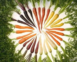 В разных видах морковки много витамина А