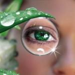 Какие витамины в таблетках улучшают зрение?