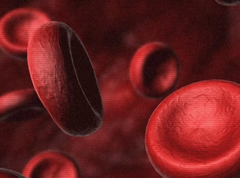 От достатка фолиевой кислоты в организме улучшается состав крови