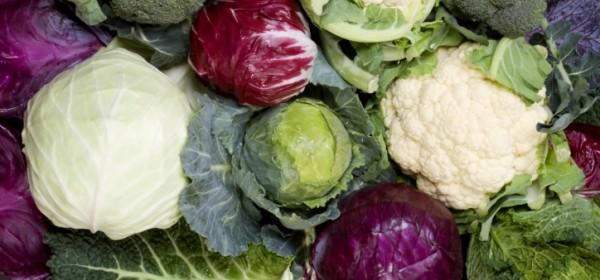 Во всех видах капусты очень много витамина К